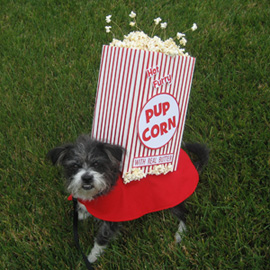 Pupcorn Dog Costume
