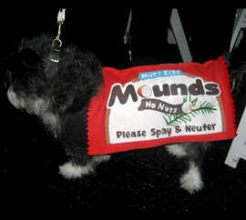 Mounds Bar Dog Costume