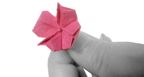 Origami flower 4 petals mightylinksfo